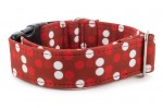 Halsband Red Dots - Detail des Musters