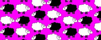Sheep Dream Pink